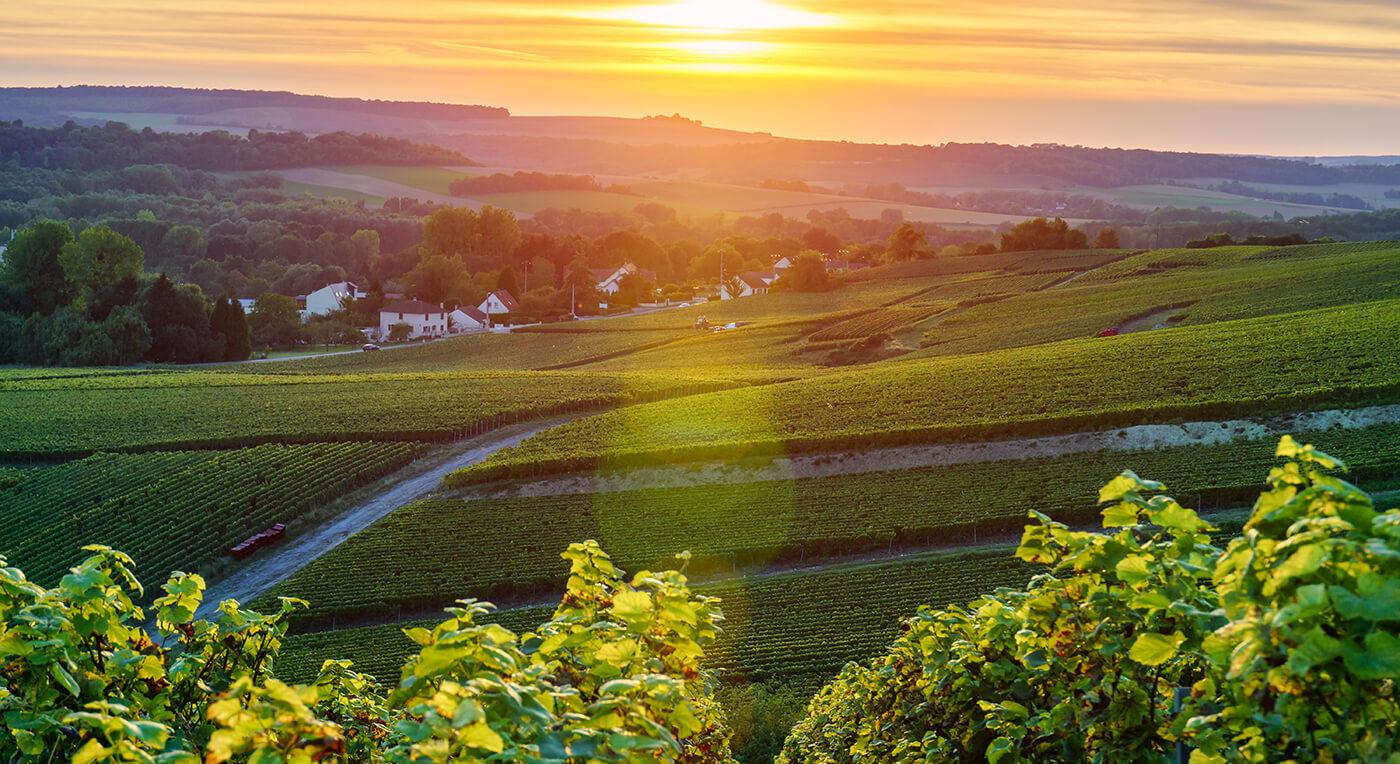 Resa till vackra Champagne-distriktet i Frankrike