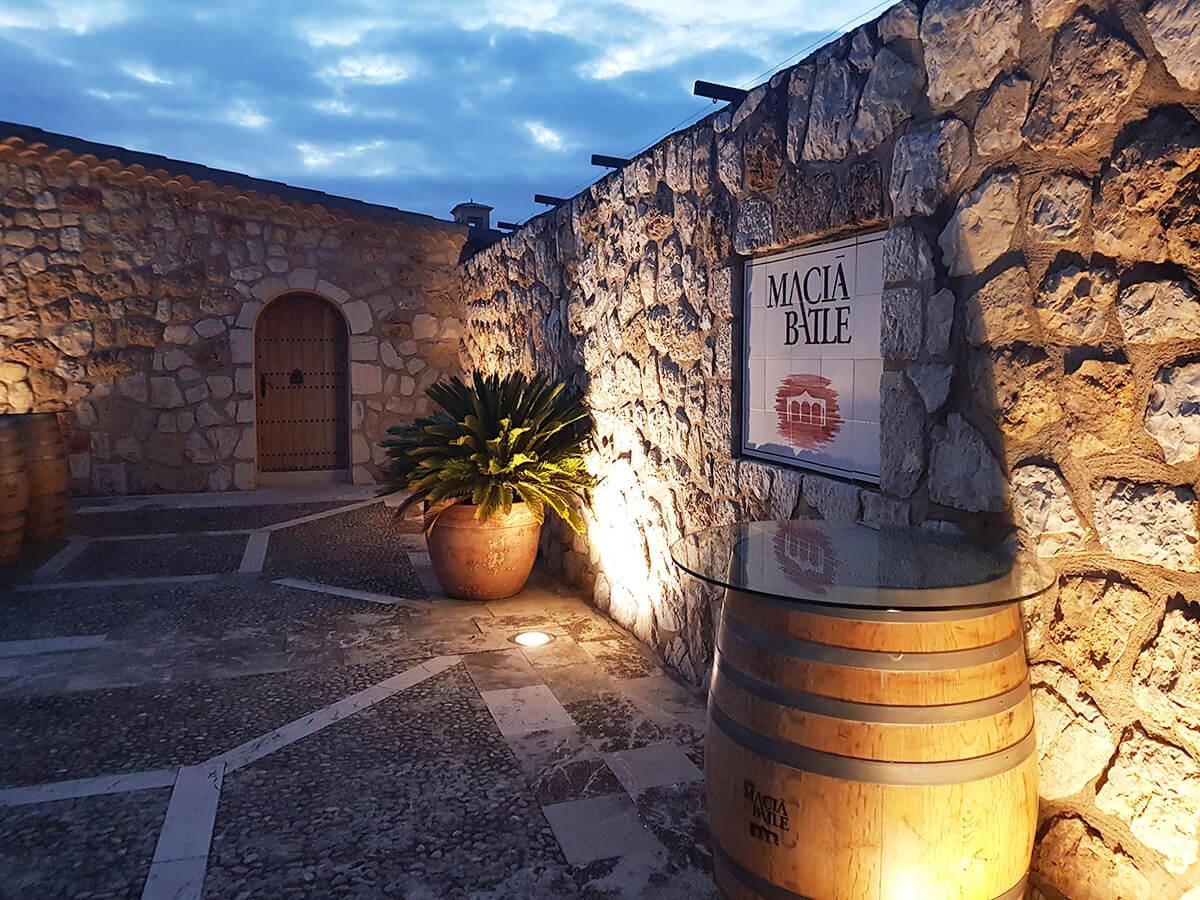 Vingård på Mallorca