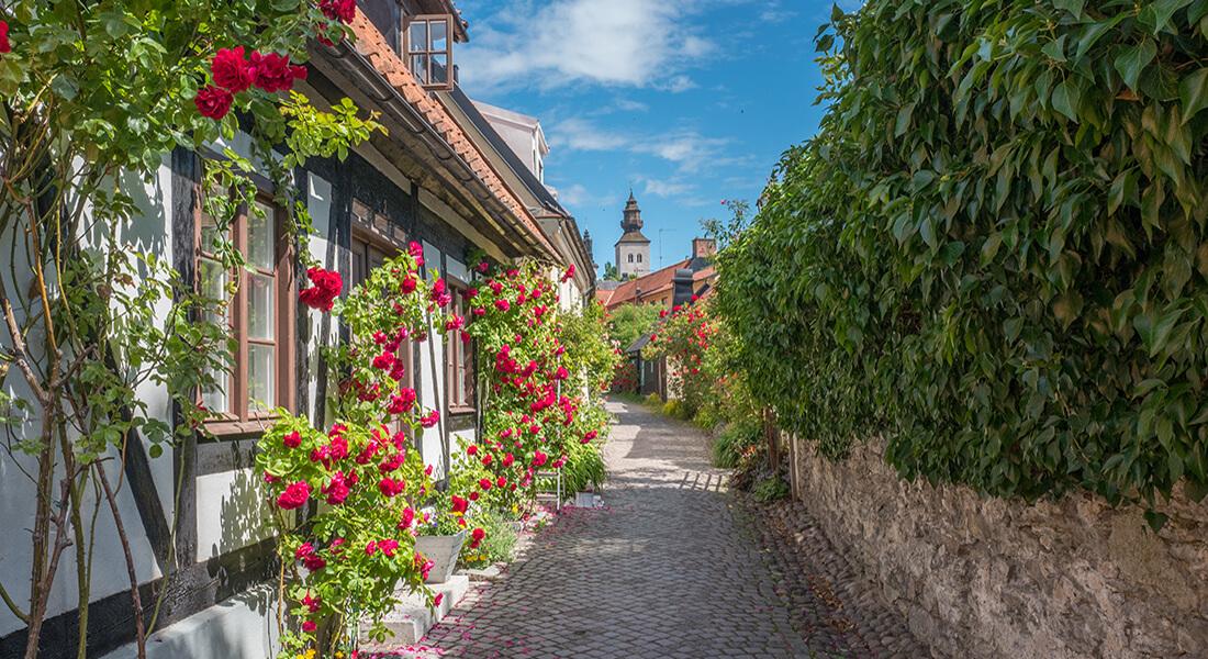 Konferens på underbara Gotland