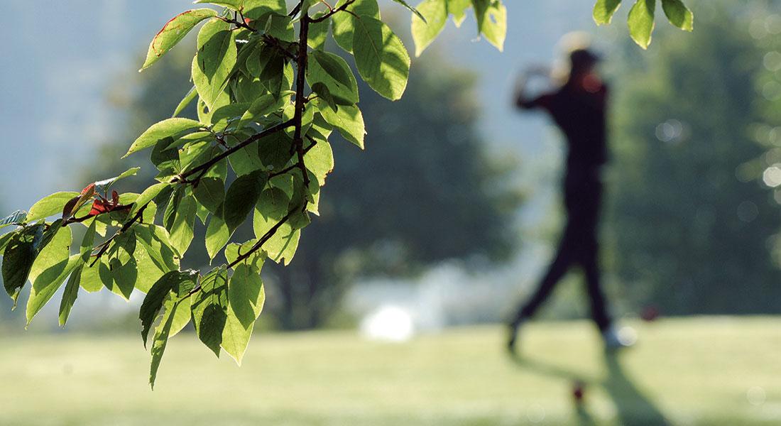 Golfare på konferens i Sverige