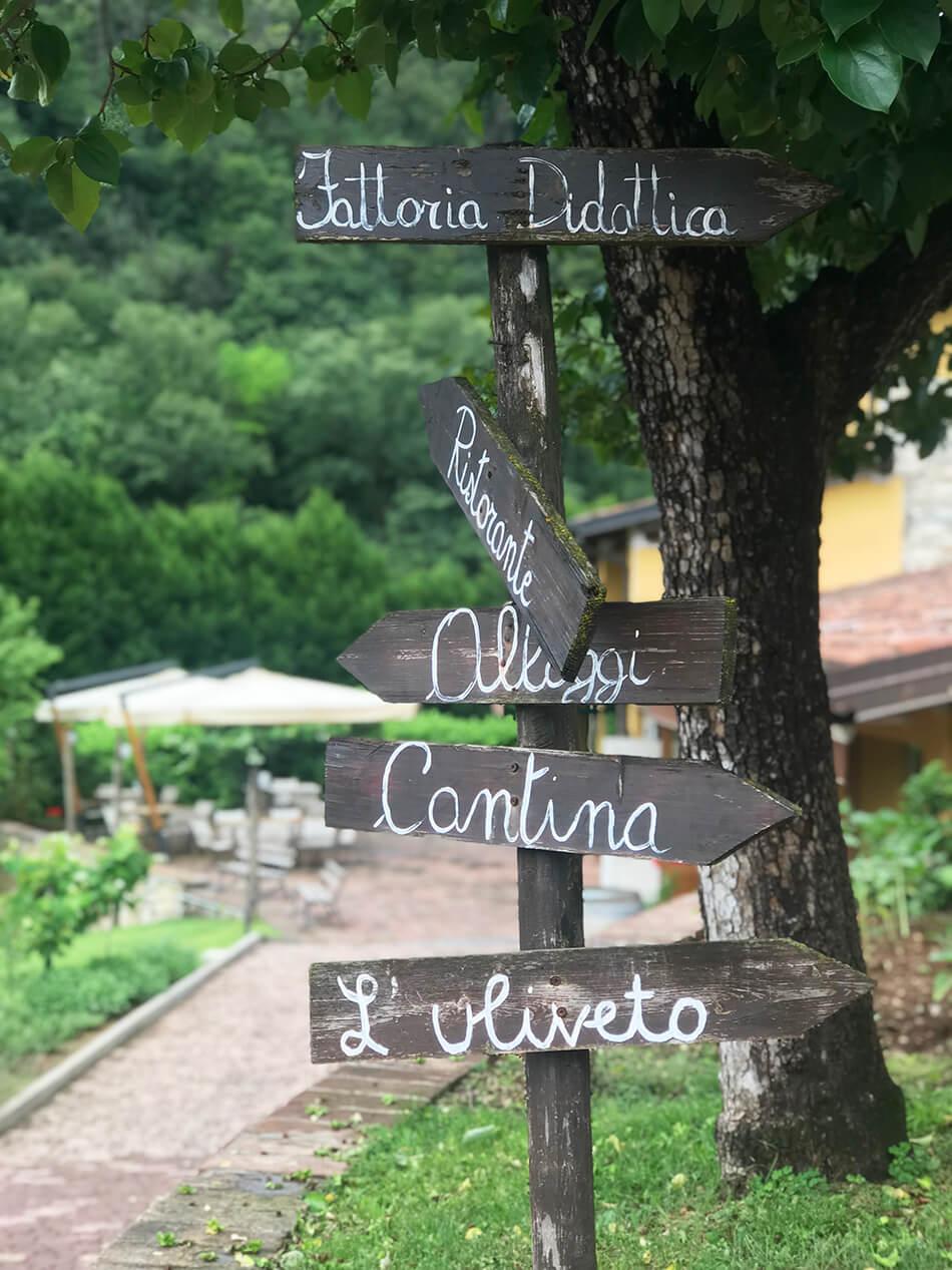 Trevlig vingård att besöka för grupper och företag